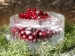 saaga-cranberries-in-icy-bowl